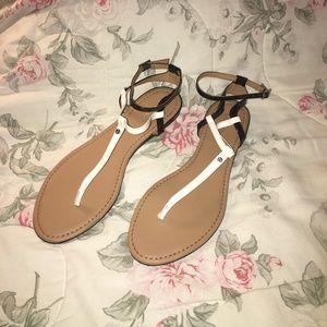 Calvin Klein Haubrey Flat Sandals Size 8.5